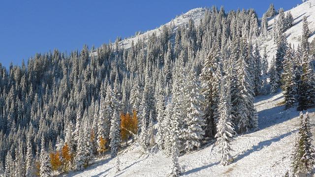 Enjoy Thanksgivig Day in Vail, Colorado