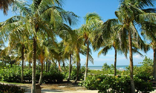 Enjoy Vacation in Key West