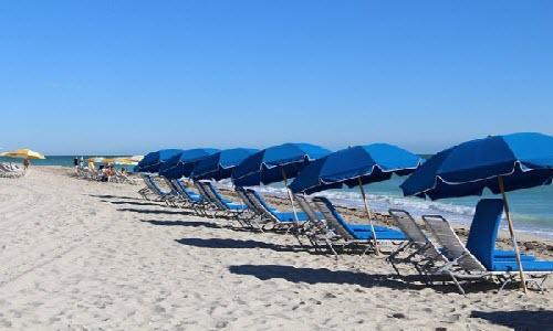 Enjoy Vacation in Miami