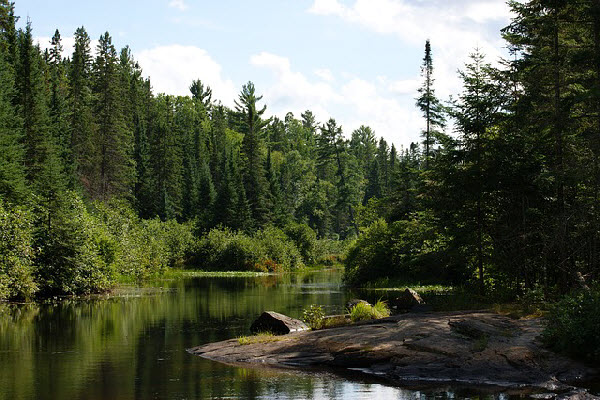 Algonquin Park, Canada