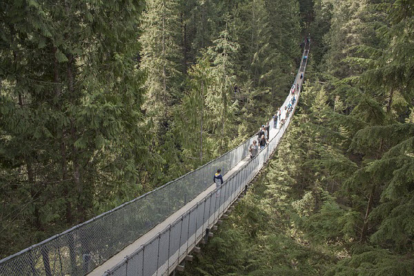 Capilano Suspension Bridge in Vancouver, Canada