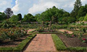 Beautiful Garden in Asheville, North Carolina