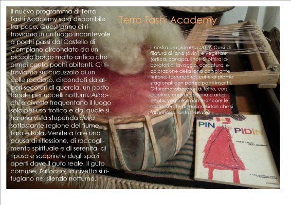 Terra tashi academy