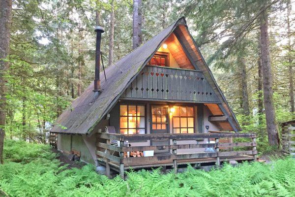 Mt. baker lodging - snowline cabin #86sl - rustic - pets ok - bbq - sleeps 6