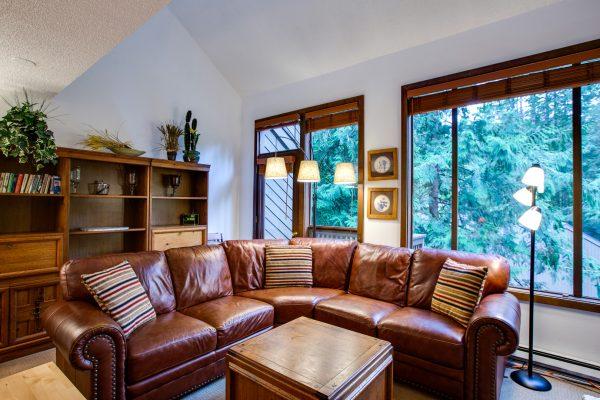Mt. baker lodging - snowater condo #31sw - fireplace - wifi - washer/dryer - sleeps 4