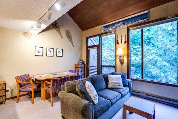 Mt. baker lodging - snowater condo #59sw - fireplace - dishwasher - washer/dryer - sleeps 6
